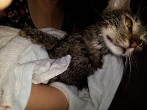 ilk banyo!